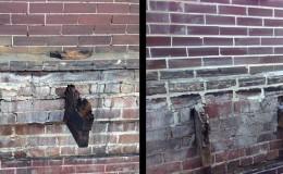 historical brick restoration